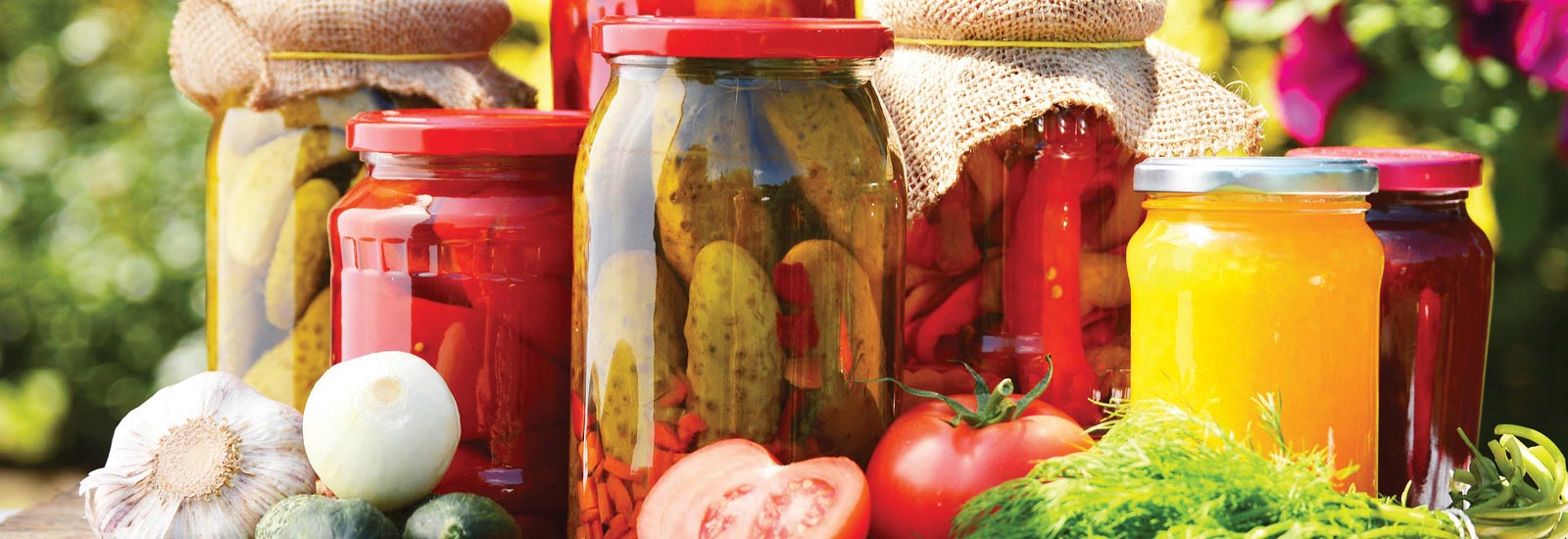 Shop our variety of canning supplies.