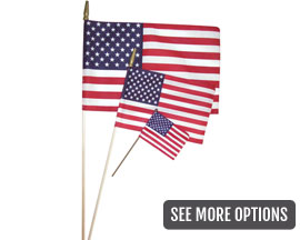 Flag Zone U.S. Spearhead Flag - Choose your Size